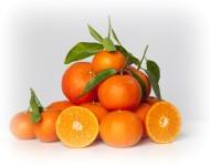 Lire la suite de La clémentine : le fruit vitaminé de notre hiver…