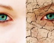 Lire la suite de Soleil : attention au vieillissement de la peau !