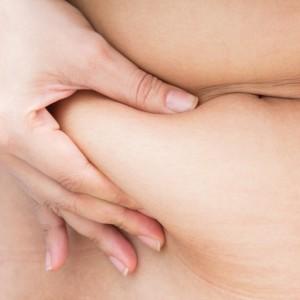 graisse