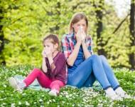 Lire la suite de Rhinite allergique : le rhume des foins est de retour !