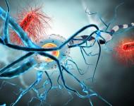 Lire la suite de Sclérose en plaques (SEP): symptômes, causes, traitements