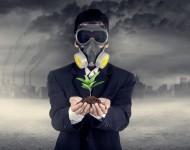Lire la suite de Polluants organiques : le gouvernement agit