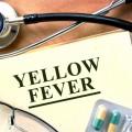 fièvre jaune