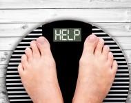 Lire la suite de Un gène de la satiété pourrait aider à lutter contre l'obésité