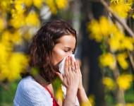 Lire la suite de Allergies respiratoires : le cri d'alarme des spécialistes