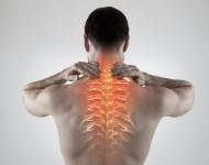 Lire la suite de Douleurs : Les Français en ont «plein le dos» !