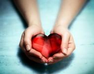 Lire la suite de Sang : une percée dans la recherche