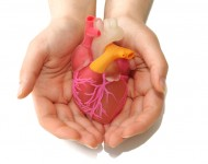Lire la suite de Don d'organes : un nouvel appel est lancé