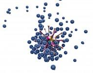 Lire la suite de L'immunothérapie, la révolution du traitement du cancer – ITW