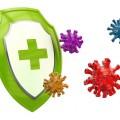 microbiote et immunité
