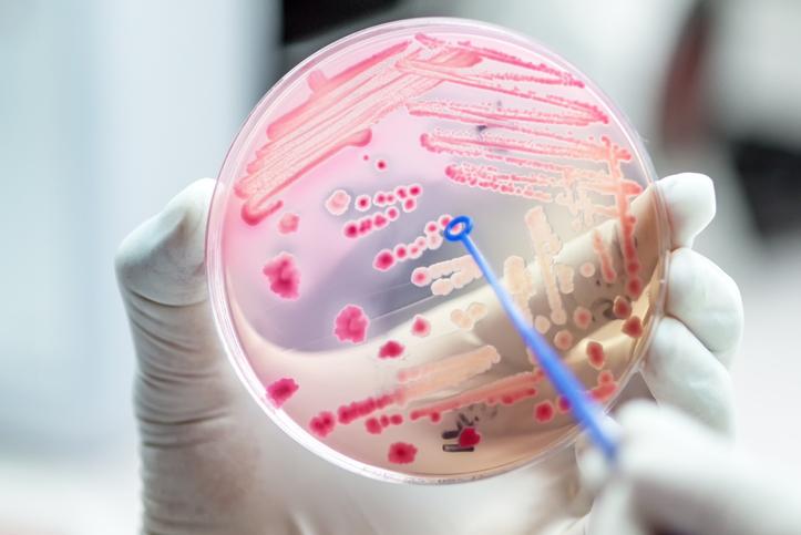 antimicrobien