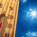 fortes chaleurs