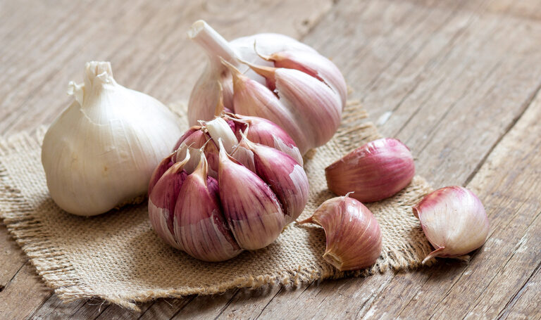 Garlic: the unknown powers of an Olympic food!  - News ...